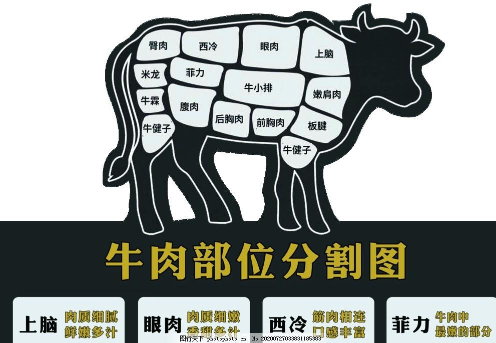 牛肉分割图,牛肉文化,牛肉文化海报,牛肉文化展板,牛肉文化图片,牛肉文化广告,牛肉文化背景