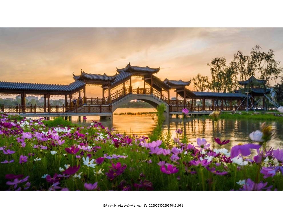 涼亭,美景,湖畔,鮮花,夕陽,設計,廣告設計