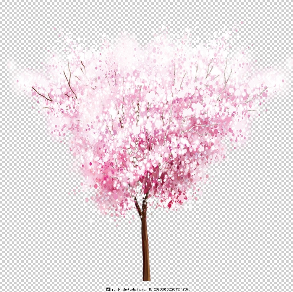 手绘植物花卉,森系花枝,花卉花草,园林艺术,园艺,园林盆栽,园艺盆景