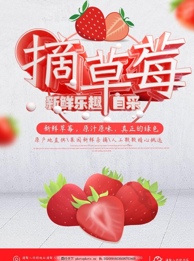 草莓,草莓采摘,采摘草莓,草莓熟啦,草莓園,新鮮草莓,草莓采摘園