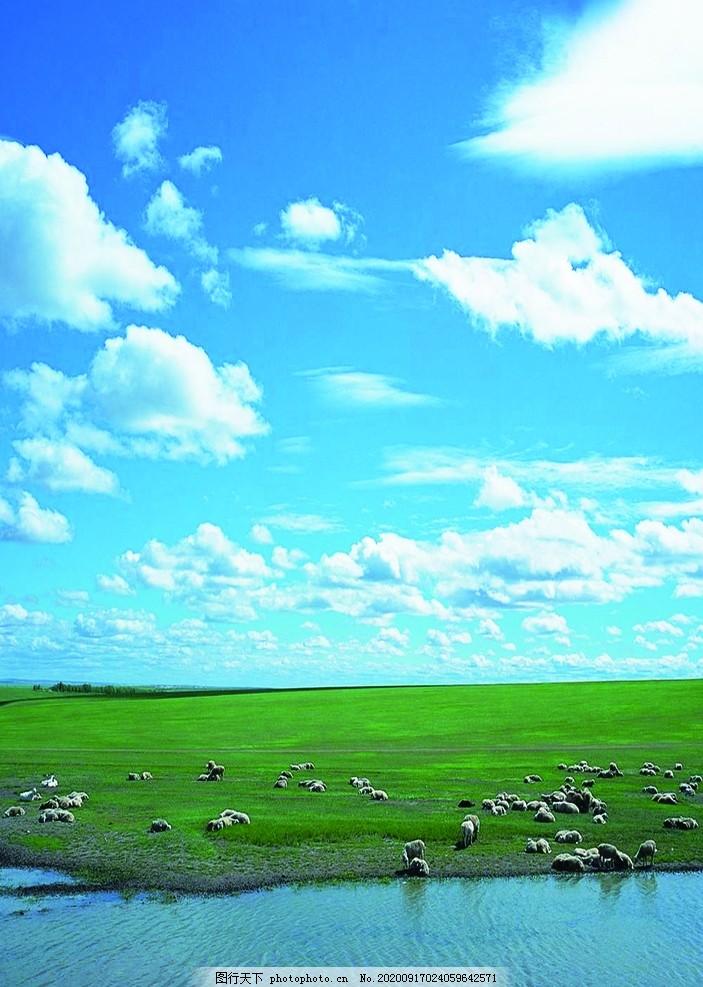 草原,羊群,馬,駿馬,藍天,湖泊,白云