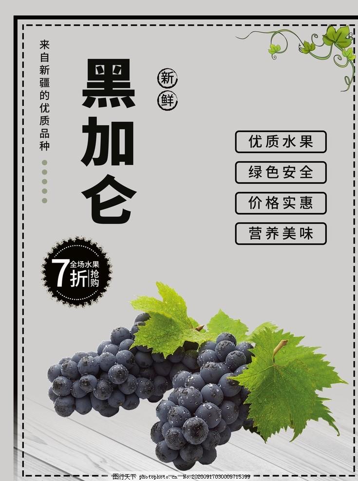 黑加侖海報,黑加侖廣告,黑加侖畫冊,草龍珠,蒲桃,綠葡萄干,葡萄干包裝
